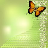 Joyful green bokeh spring background with yellow butterfly and small white flowers on grid. For your spring design Royalty Free Stock Photography