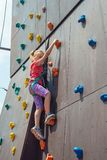 Joyful and happy girl blonde, climbs to the top on an artificial rock and looks into the camera with a safety rope, is engaged in royalty free stock photo