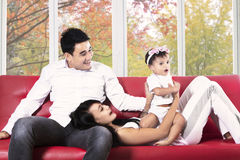 Joyful hispanic family on sofa. Happy young hispanic family playing on sofa at home in autumn Royalty Free Stock Images