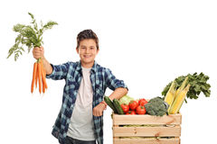 Joyful kid holding a bunch of carrots. And posing next to a crate full of vegetables  on white background Royalty Free Stock Image