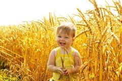Joyful kid in wheat field royalty free stock images