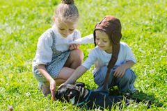 Joyful kids playing with the dog, French bulldog Royalty Free Stock Photography