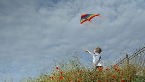 Cheerful little boy standing among grass holding flying colorful kites on sky background