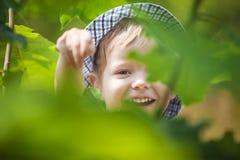Joyful little boy in summer park. Royalty Free Stock Images