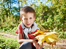 Joyful little boy with yellow leaves in autumn park on sunny day stock photography