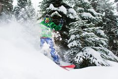 Joyful male snowboarder rides in forest creating a spray of snow. Joyful male snowboarder rides in the forest creating a spray of snow Royalty Free Stock Photo
