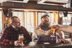 Joyful males drinking lager in pub Royalty Free Stock Photo