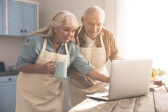 Joyful mature husband and wife using computer in cook room. Excited senior men and women are reading interesting recipe on laptop and smiling. They are standing Stock Photo