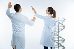 Joyful medical coworkers using invisible screen while studying genetics. Teamwork makes the dreamwork. Selective focus on a turned back team of medical royalty free stock photography