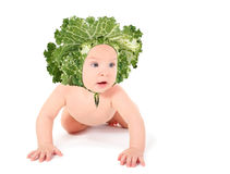 Joyful naked baby with cabbage is creeping Stock Images