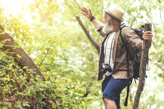 Joyful old male tourist admiring beautiful forest. Look at this beauty of nature. Excited mature man is pointing arm sideways and laughing. He is standing in the Stock Images