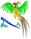 Joyful parrot. Isolated line art humorous cartoon image stock illustration