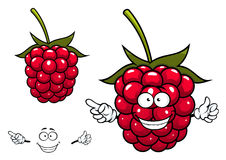 Joyful red raspberry fruit character Royalty Free Stock Photography