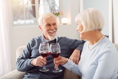 Joyful senior couple celebrating their wedding anniversary royalty free stock images