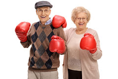 Joyful seniors posing with boxing gloves. Isolated on white background Royalty Free Stock Images