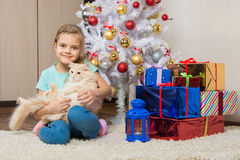 Joyful seven year old girl with a cat sitting under the Christmas tree with gifts Stock Photography