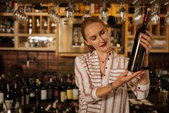 Joyful skilled sommelier looking at the wine bottle. Special choice. Joyful skilled sommelier smiling while looking at the wine bottle royalty free stock photos