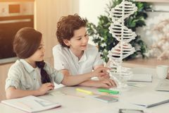 Joyful smart kids looking at the DNA model. Science project. Joyful positive smart kids sitting at the table and looking at the DNA model while preparing to the Royalty Free Stock Image