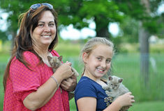 Joyful smiling mom & daughter & new pet kittens Stock Images