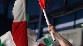 Sports fans wave bright flags spending time at competition