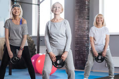 Joyful sporty women having a fitness class Stock Images