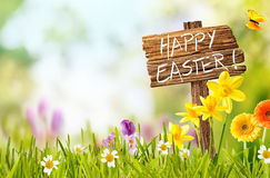 Joyful spring background for a Happy easter. Joyful colorful spring background for a Happy easter with seasonal greeting handwritten on a rustic wooden sign stock photo