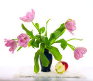 Joyful still-life with curly tulips Royalty Free Stock Images