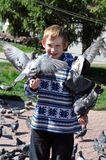 The joyful teenage boy feeds pigeons from hands Royalty Free Stock Photos