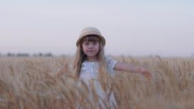 Joyful village childhood, little cute kid girl in white dress and straw hat spins touching reaped grain oat spikes in. Golden bread field at harvest season stock video