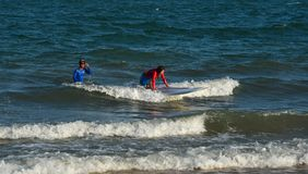Joyful young woman beginner surfer stock photo
