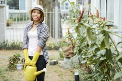 Joyful young woman gardening royalty free stock images