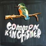 Joyous child-s world, mixed media, bird, Common kingfisher Stock Photography