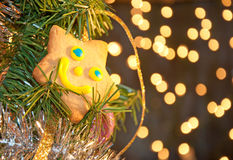 Joyous star shaped cookie Stock Images