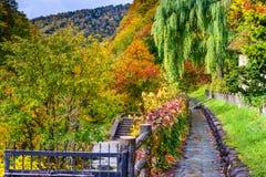 Jozankei Japan Fall foliage Royalty Free Stock Photography