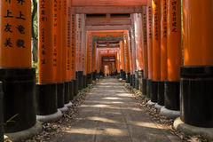 Kyoto Fushimi Inari Shrine 42 Stock Photo