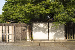 Japanese garden with white wall and maple tree Stock Image