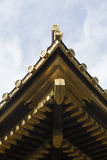 Golden Toshogu shrine in Tokyo 12 Stock Photography