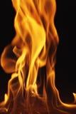 jpg 6 пожаров Стоковые Изображения RF