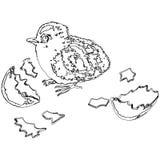 Jpg da ilustração eps10 do vetor da galinha ilustração stock