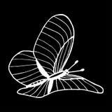Jpg dell'illustrazione eps10 di vettore della farfalla illustrazione vettoriale