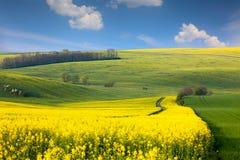 Jpg20150513203315394558 Panoramisch landschap van kleurrijke heuvels met blauwe hemel en wolken stock afbeeldingen