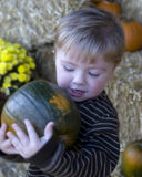 jpg pumpkinboy Στοκ φωτογραφία με δικαίωμα ελεύθερης χρήσης