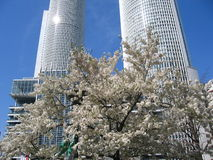 JR Train Station Nagoya, Japan 名古屋 Stock Image