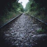 järnväg Royaltyfri Fotografi