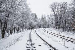 Järnväg i snow under den soliga skyen för blått Royaltyfri Foto