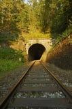 Järnväg tunnel Fotografering för Bildbyråer