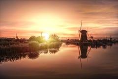 Jätte- holländare på natten Arkivbilder