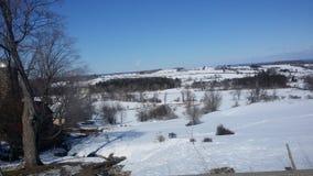 już target1204_1_ mieć hibernaci lodowego jeziora nie rośliien teraźniejszości śniegu wiosna wciąż thawn wciąż budzącego się Fotografia Royalty Free
