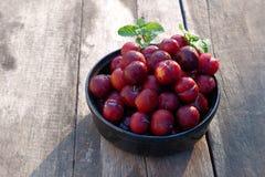 Ju-Li della prugna la frutta è simile alle specie rosse di Luang di divieto Ma il risultato sarà più piccolo fotografia stock libera da diritti