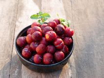 Ju-Li della prugna la frutta è simile alle specie rosse di Luang di divieto Ma il risultato sarà più piccolo fotografie stock libere da diritti